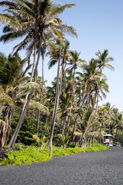 Schwarze Strände: Punalu'u Beach, Hawaii, USA
