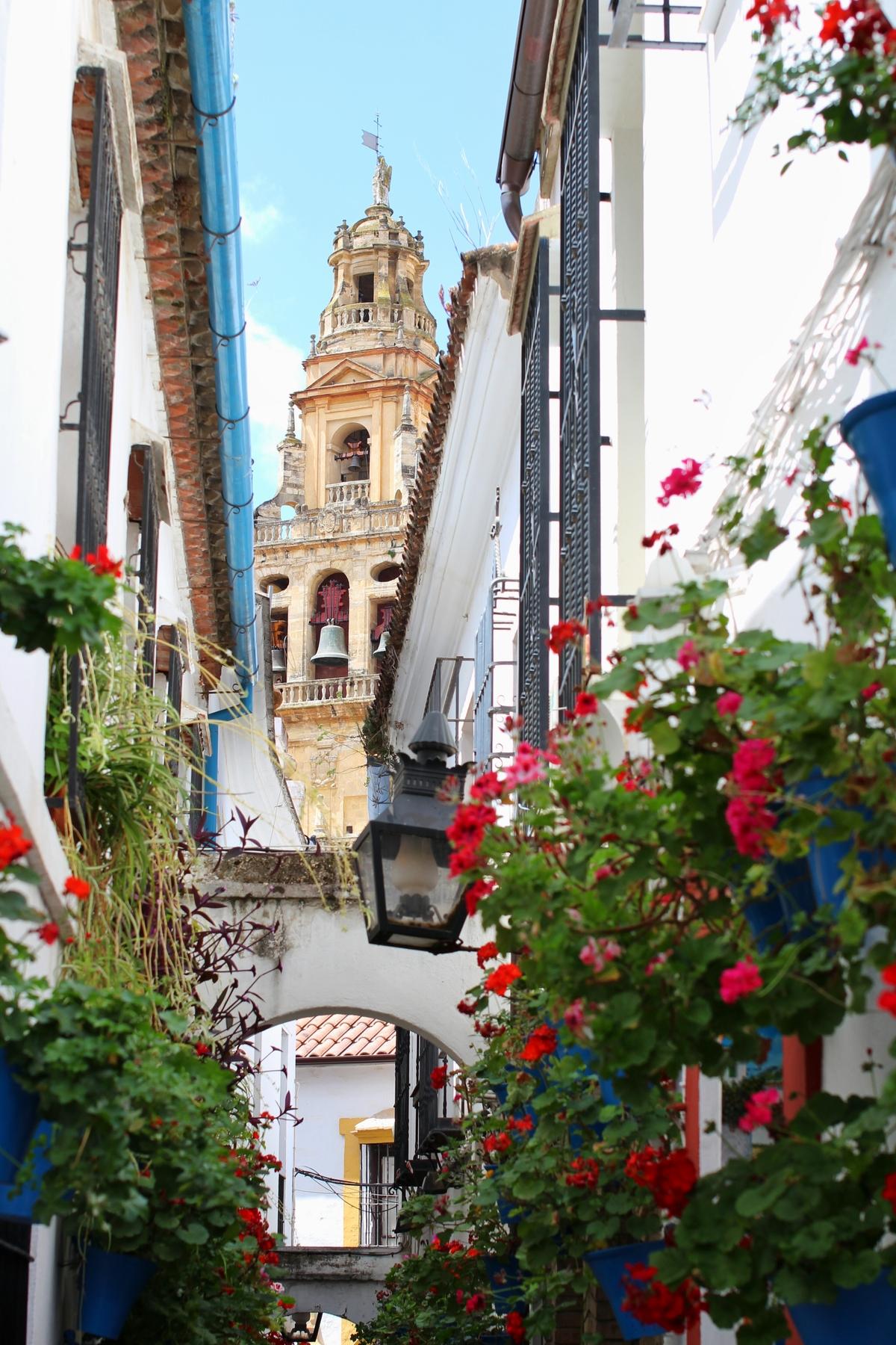 La Calleja de las Flores, una de las calles más bonitas que ver en Córdoba