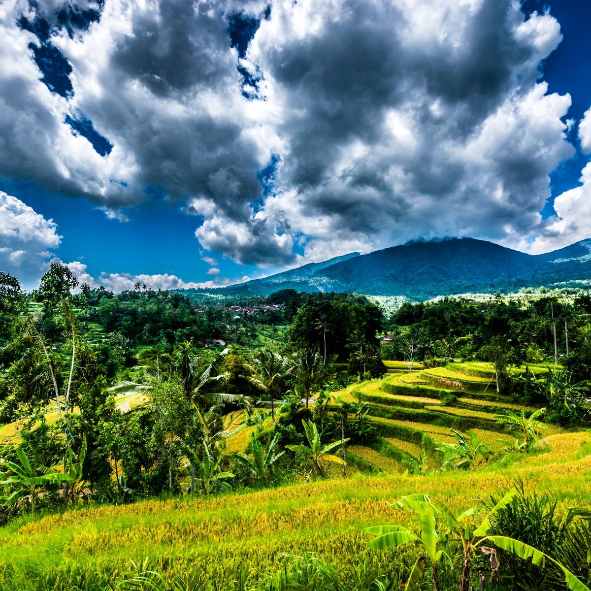 Der ultimative Reiseführer für Südostasien: Infos zu Visa, Impfungen und Co.