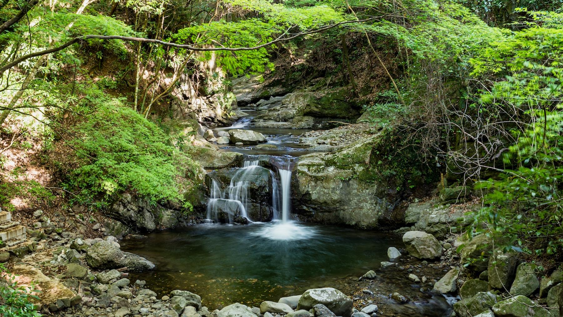 大阪府 犬鳴山の滝