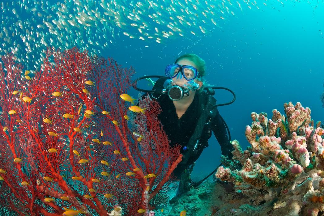 Najlepsze miejsca do nurkowania: Gozo, Malta