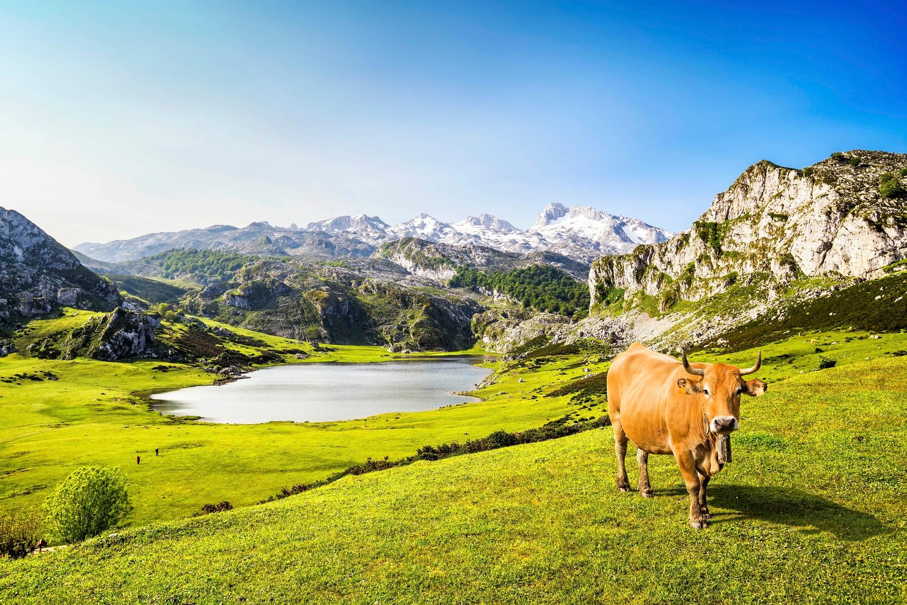 Vacaciones baratas: 17 destinos económicos: Asturias