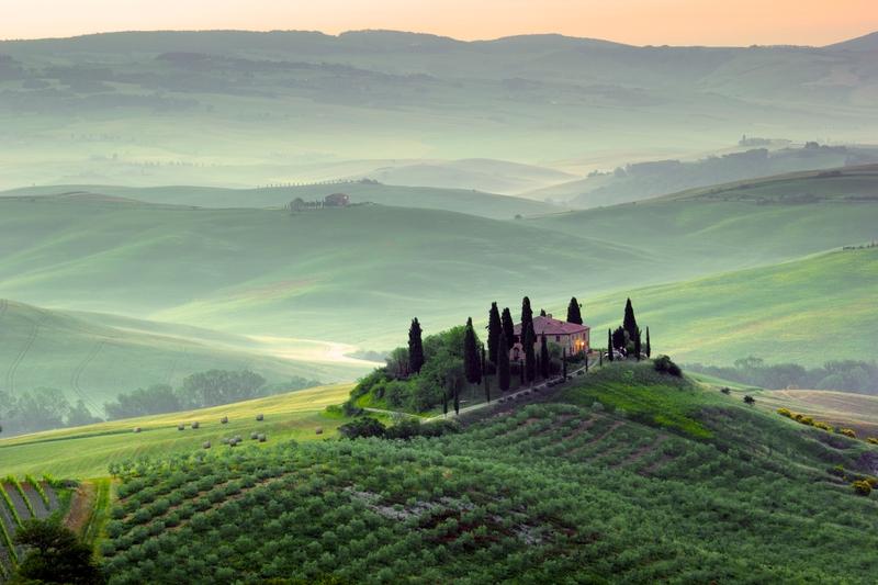 Изумрудные виноградники и винное хозяйство в Тоскане, Франция