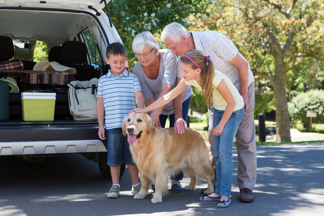 Kids, grandparents and a dog next to the car - road trip with the family