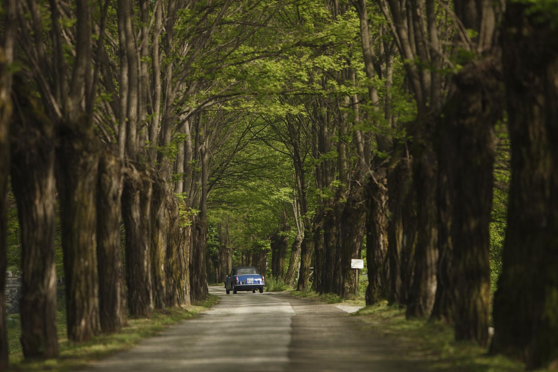 Die schönsten Straßen Deutschlands