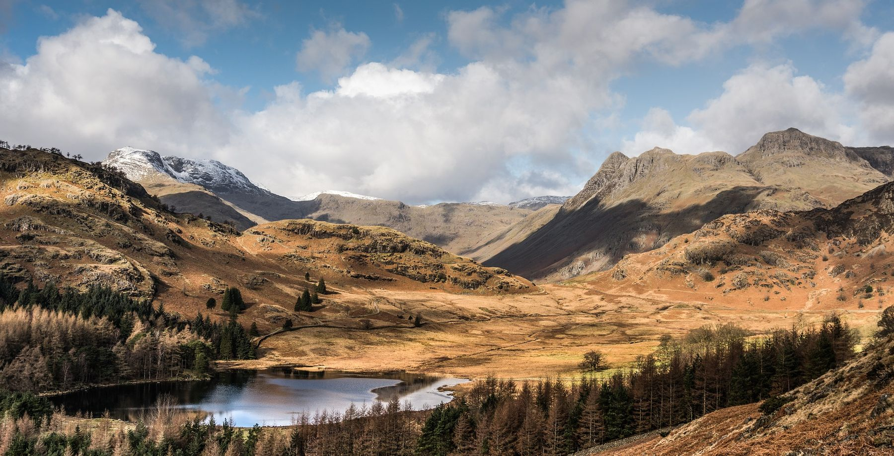 Blea Tarn, a remote country scene with mountains and sparse forest in the Lake District