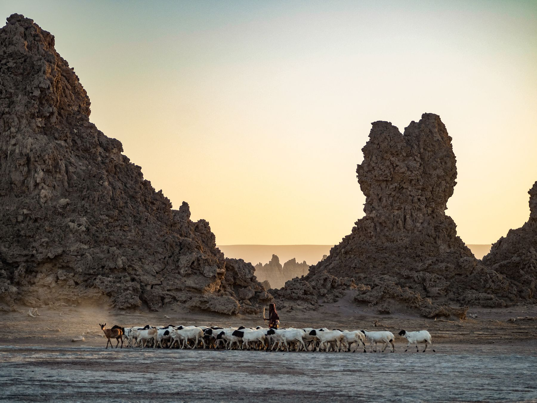 Unexpected places to travel Djibouti Africa