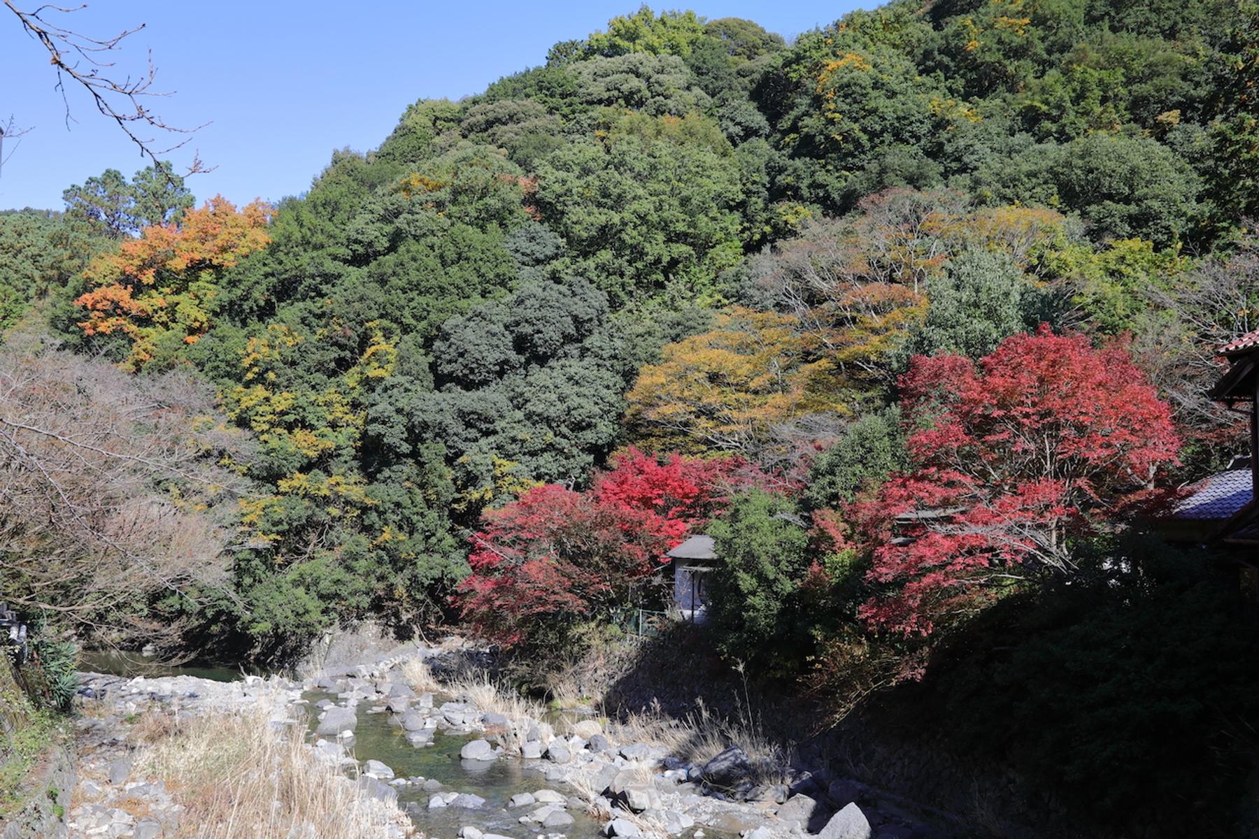 大阪府 犬鳴山