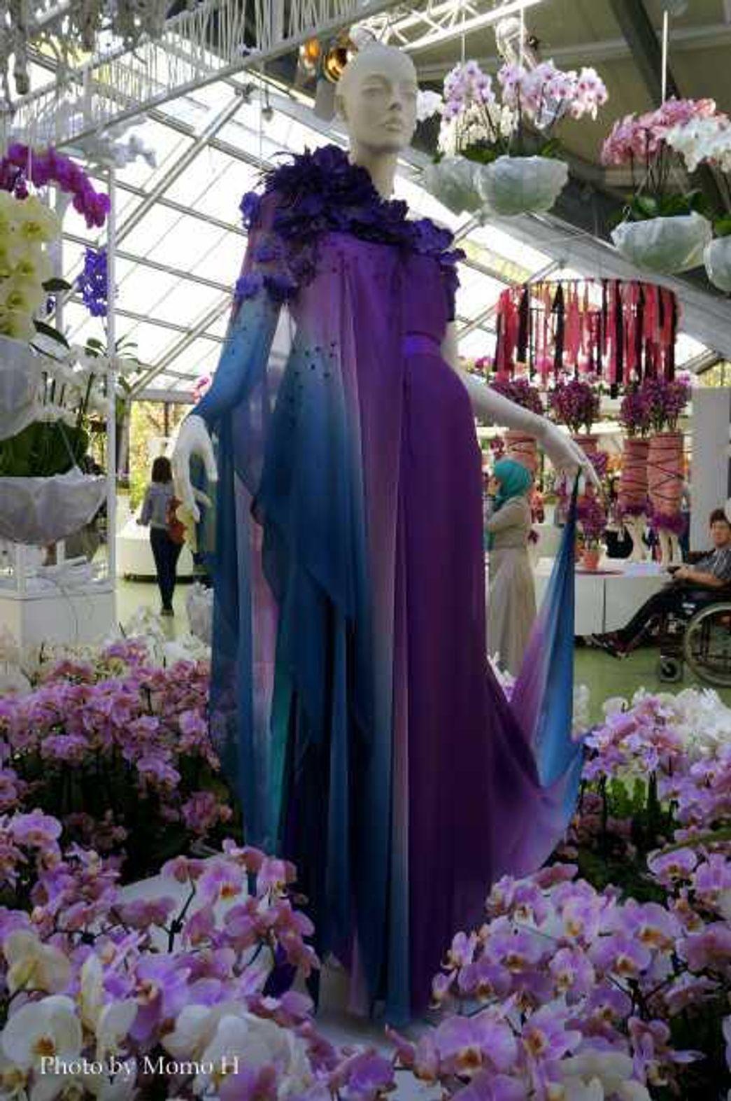 ビアトリクス(Beatrix)エリア - ドレスを花で飾った人形